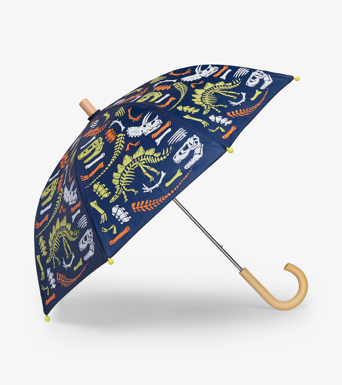 View larger image of Dino Fossils Umbrella